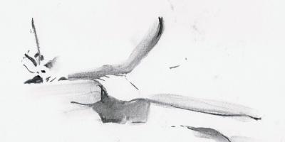 skriva -writing,skriva -writing kroki 2014 03 22 miss J 14, tecknare (drawer): Marica Ohlsson